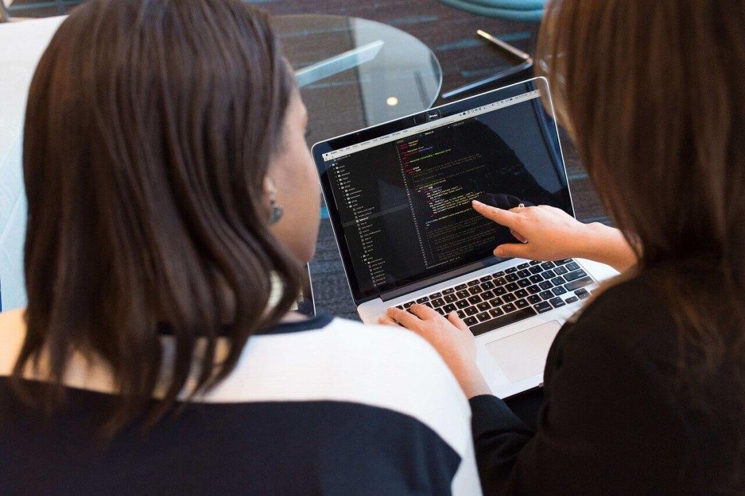 A carreira do profissional de desenvolvimento de software
